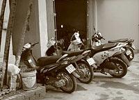 Mopeds, bald Vergangenheit?